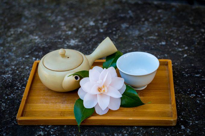 Recensione de Le regole del Tè e Dell'Amore