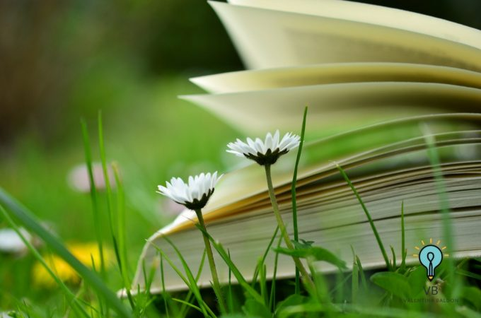 libri da leggere digital marketing